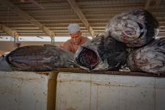 Sur Fish Market
