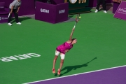 Qatar Total Open 2016